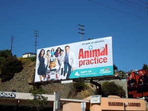 Animal Practice sitcom billboard