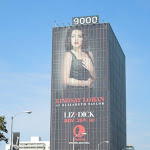 Giant Lindsay Lohan Liz Dick billboard Sunset Strip