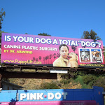 Canine plastic surgery Dr Armond Comedy Central parody billboard